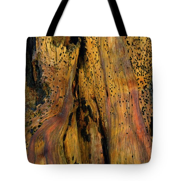 Illuminated Stump With Peeking Crab Tote Bag by Bruce Gourley