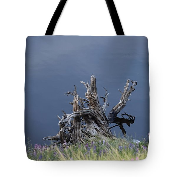 Tote Bag featuring the photograph Stump Chambers Lake Hwy 14 Co by Margarethe Binkley