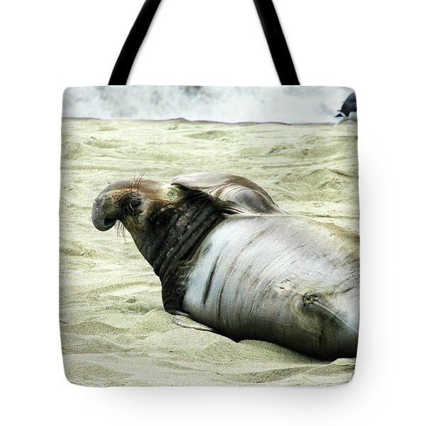 Tote Bag featuring the photograph Im Too Sexy by Anthony Jones