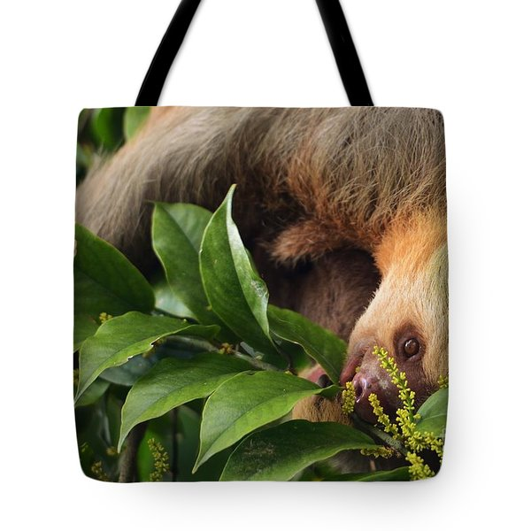 I'm Trying To Eat Here Tote Bag by Pamela Blizzard