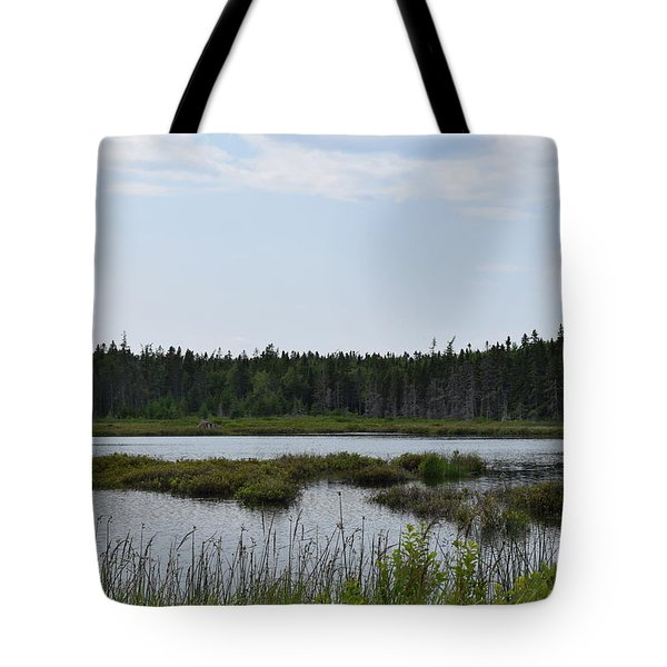 Images From Mt. Desert Island Maine 1 Tote Bag