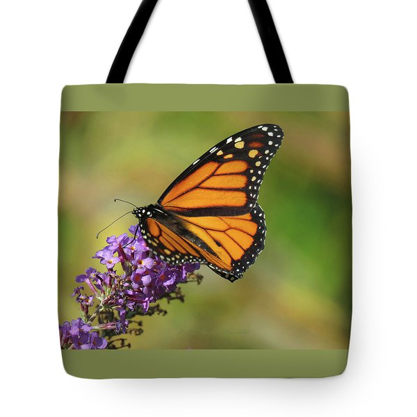 Autumn In The Garden - Monarch And Purple Floret - Nature Photography Tote Bag
