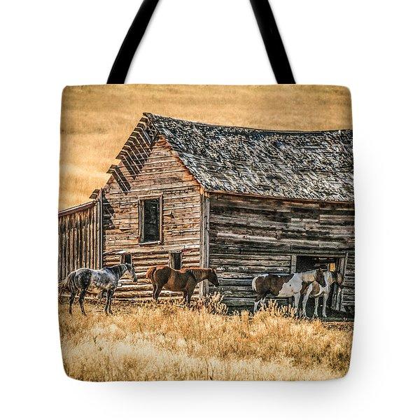 #2204 - Harrison Montana Tote Bag