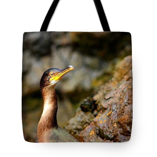 Tote Bag featuring the photograph Immature Shag by Richard Patmore