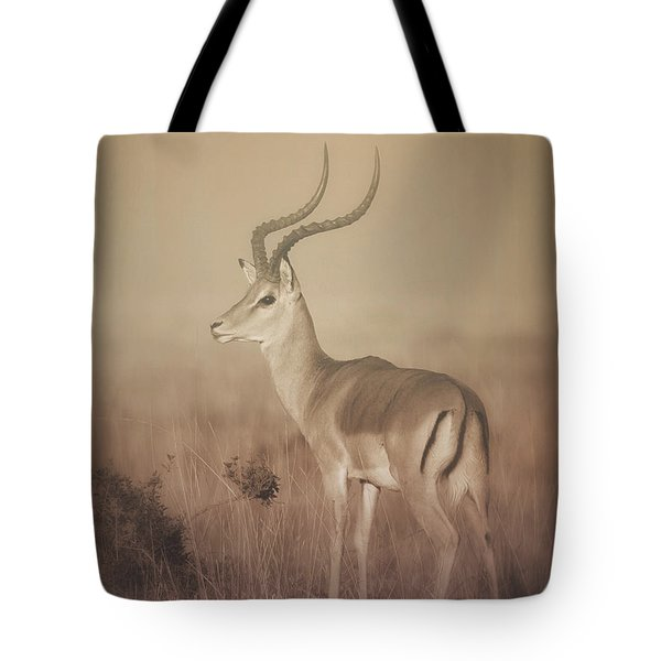 Tote Bag featuring the photograph Impala At Dawn by Chris Scroggins