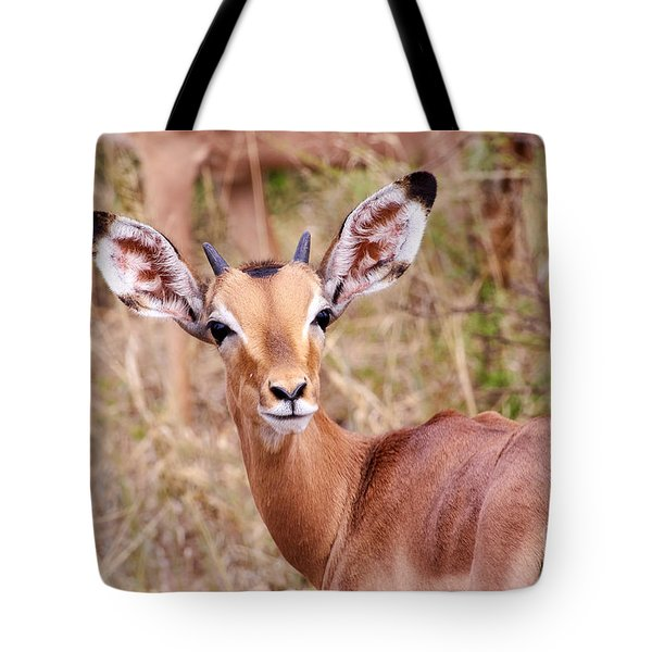 Impala Tote Bag by Juergen Klust