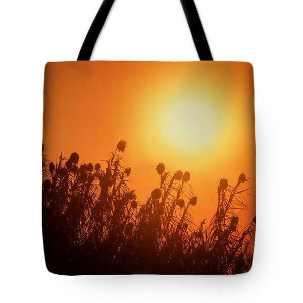 Impalila Island Sunset No. 3 Tote Bag by Joe Bonita