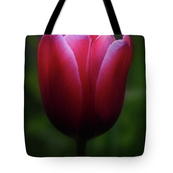 Imperfect Perfection Tote Bag