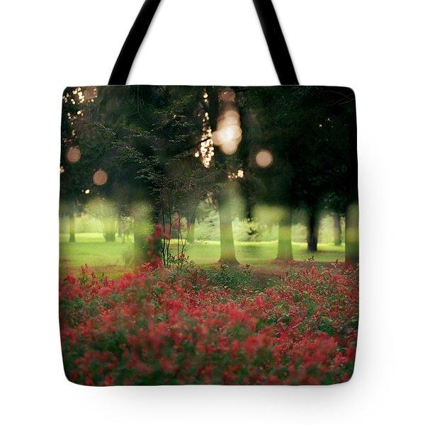 Impression At The Yarkon Park Tote Bag