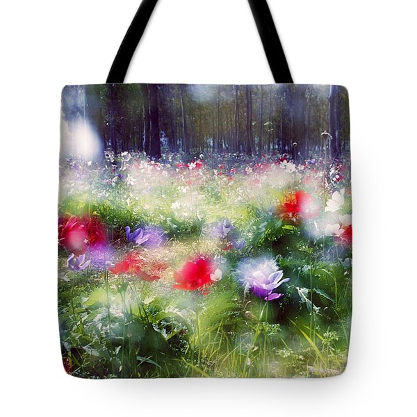 Impressionistic Photography At Meggido 2 Tote Bag