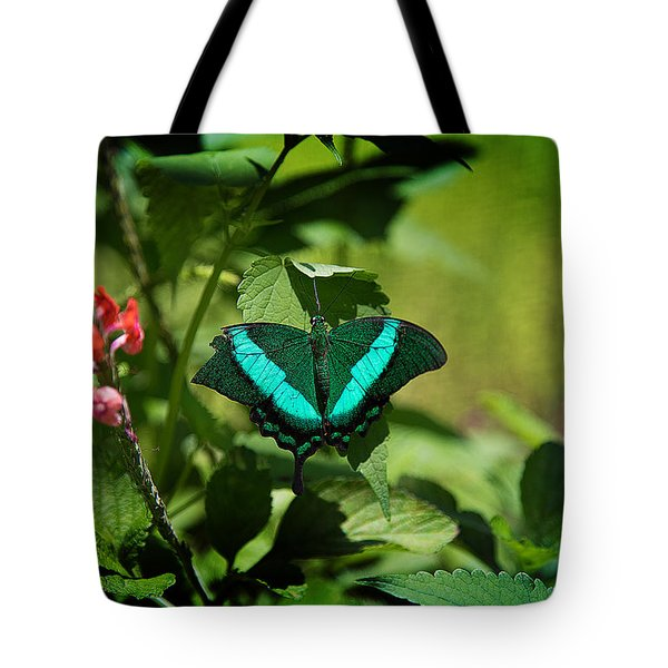 In A Butterfly World Tote Bag