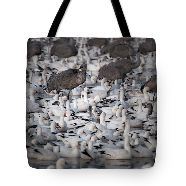 Tote Bag featuring the photograph In A Crowd - The Bosque by Britt Runyon
