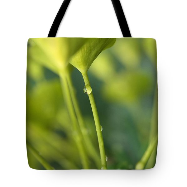 Tote Bag featuring the photograph In A Forest Of Spurge  by Connie Handscomb
