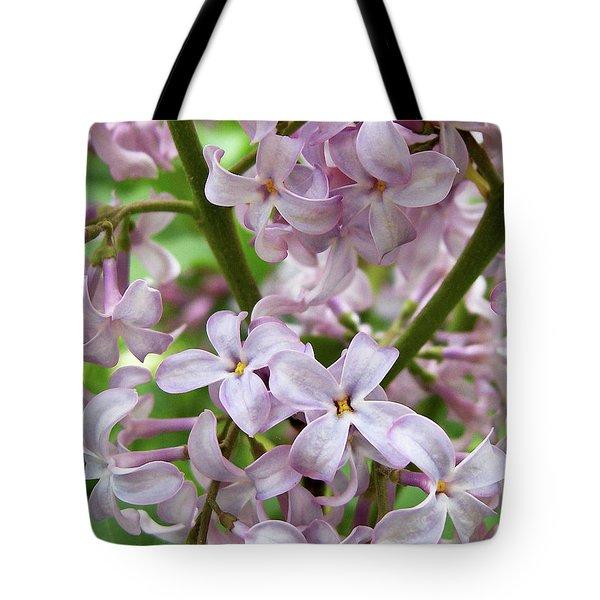 Sea Of Lilacs Tote Bag by Kathi Mirto