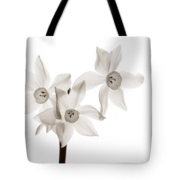 Tote Bag featuring the photograph In A Winter Window by Tim Nichols