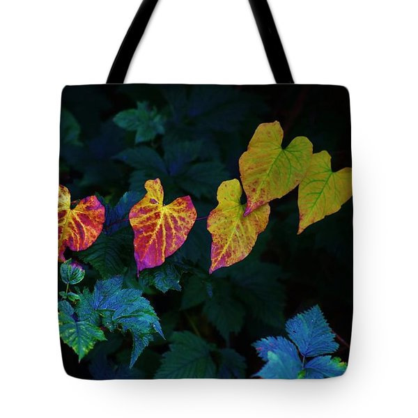 In Autumn's Light Tote Bag by Craig Wood