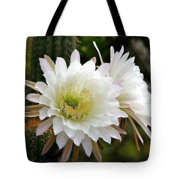 Cactus Blossoms Tote Bag by Melanie Alexandra Price