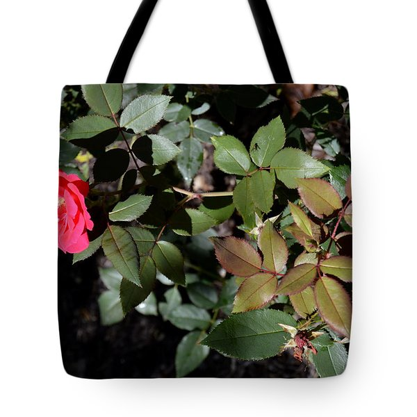 Tote Bag featuring the photograph In Bloom by W And F Kreations