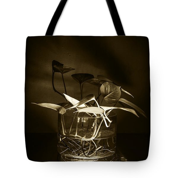 In Brown Light Tote Bag by Rajiv Chopra