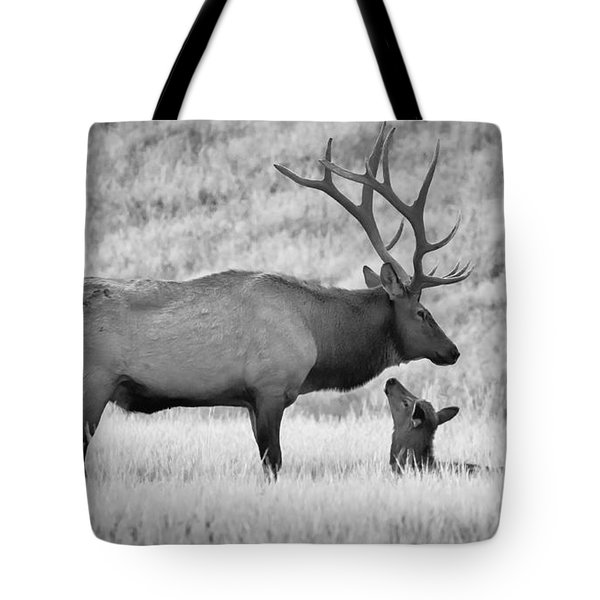 In Charge Tote Bag by Kelly Marquardt