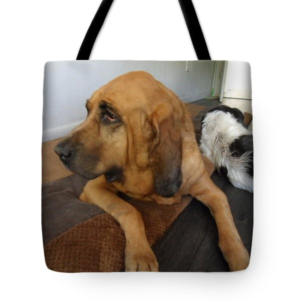 In Deep Thought Tote Bag by Val Oconnor