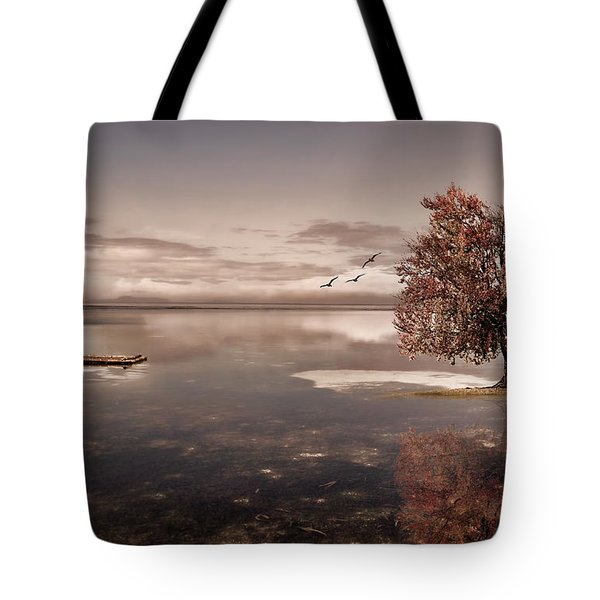 In Dreams Tote Bag by Lourry Legarde
