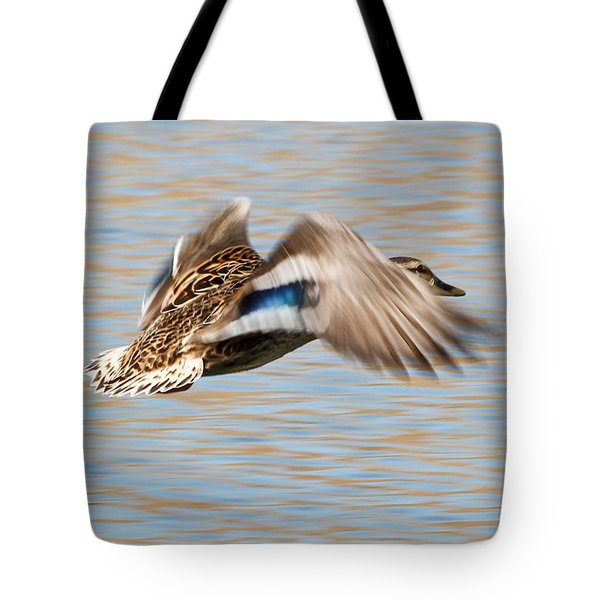 In Flight Tote Bag by Anita Oakley