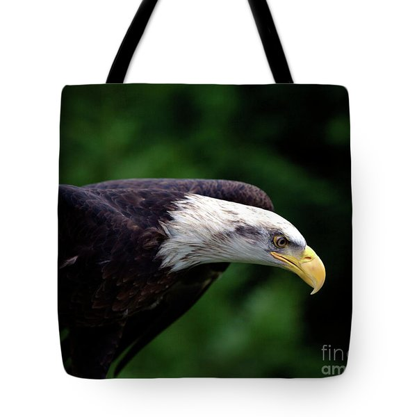In For The Kill Tote Bag
