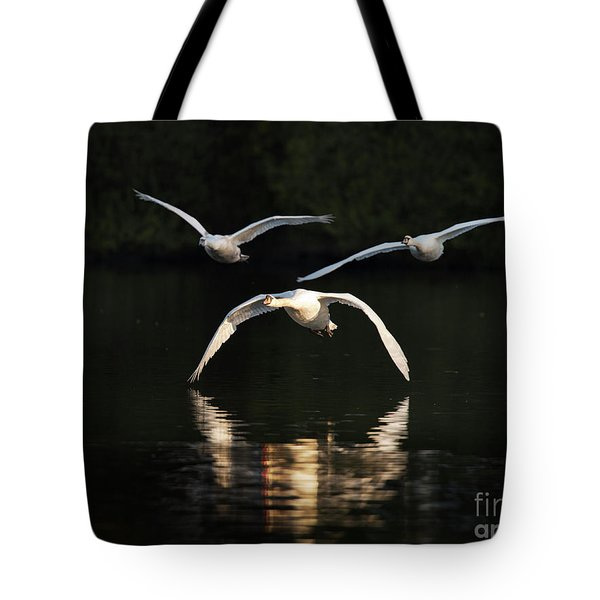 In Formation Tote Bag