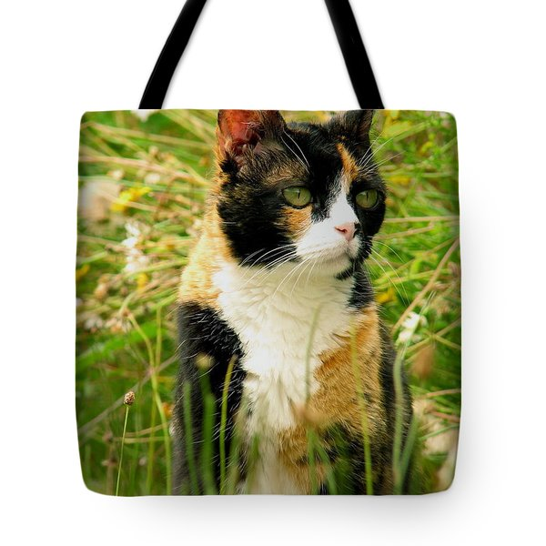 In Her Element Tote Bag by Rory Sagner