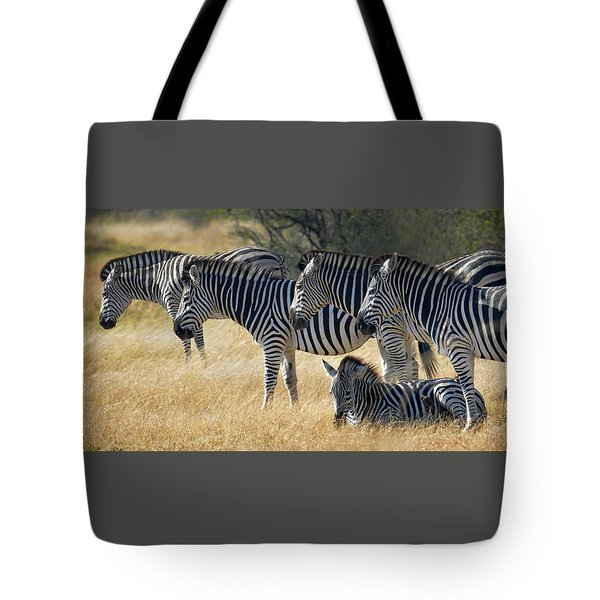 In Line Zebras Tote Bag by Joe Bonita