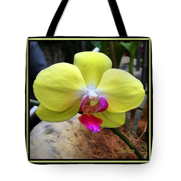 Tote Bag featuring the photograph In Living Color by Steven Lebron Langston