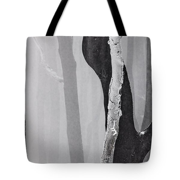 In Love Tote Bag by Evgeni Dinev