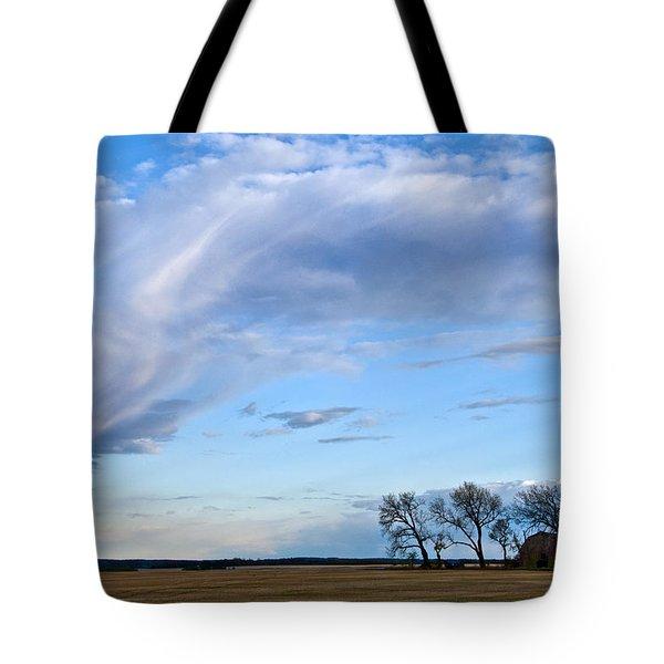 In My Dreams Tote Bag