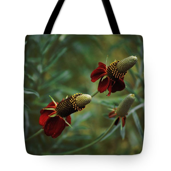 In Rousseaus Garden Tote Bag