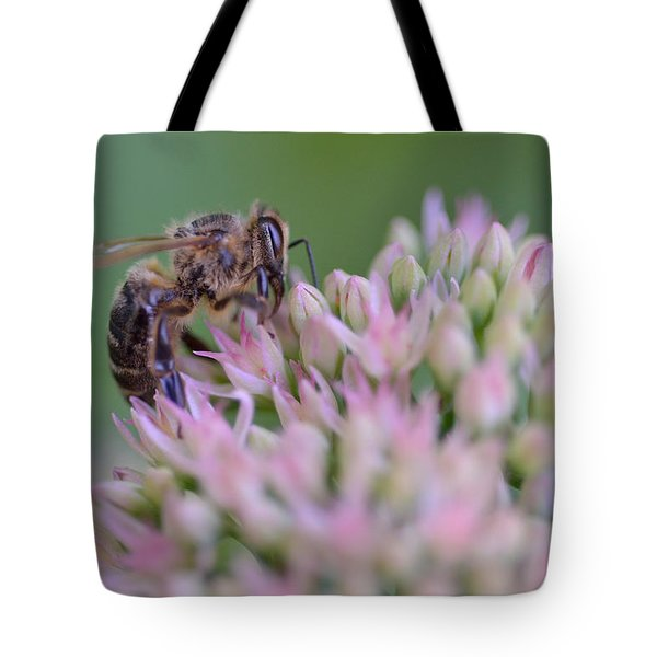 In Search Of Nectar Tote Bag