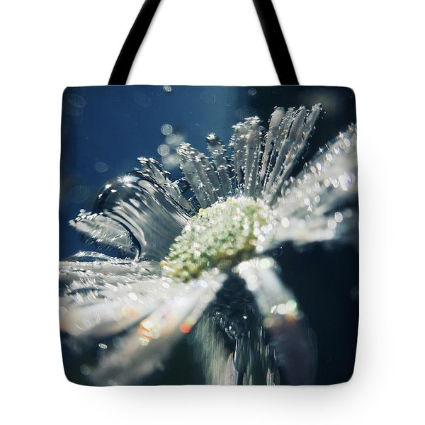 In The Big Blue Tote Bag
