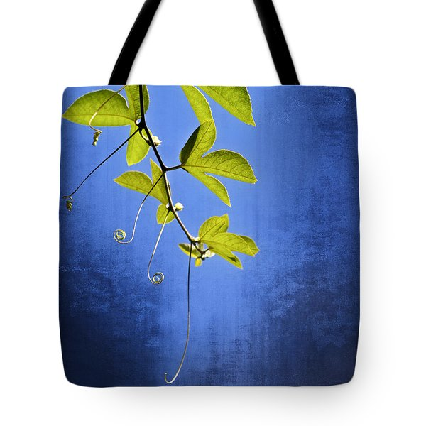In The Blue Tote Bag by Carolyn Marshall