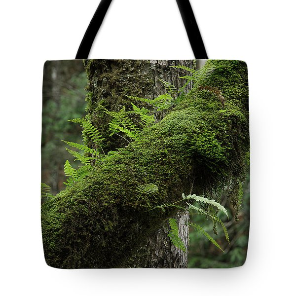 Tote Bag featuring the photograph In The Cool Of The Forest by Mike Eingle