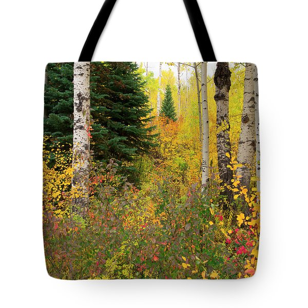 Tote Bag featuring the photograph In The Depths Of Autumn Woods by Tim Reaves