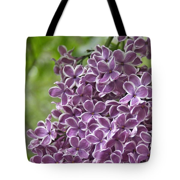 In The Garden. Lilac Tote Bag by Ben and Raisa Gertsberg