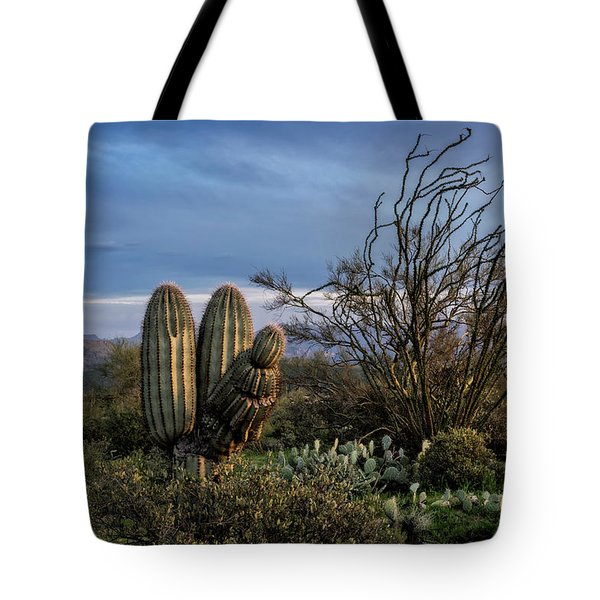 Tote Bag featuring the photograph In The Green Desert  by Saija Lehtonen