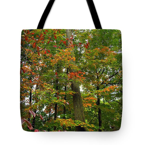 Tote Bag featuring the photograph In The Height Of Autumn by Joan  Minchak