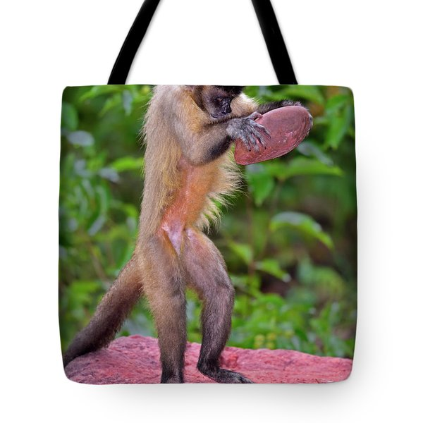 In The Kitchen Tote Bag by Tony Beck