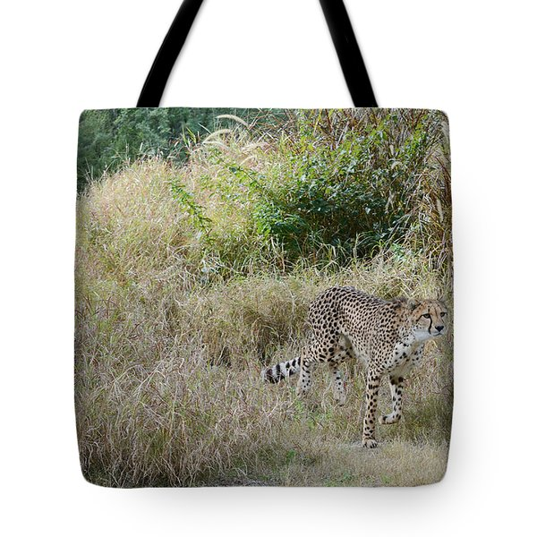 Tote Bag featuring the photograph In The Lead by Fraida Gutovich