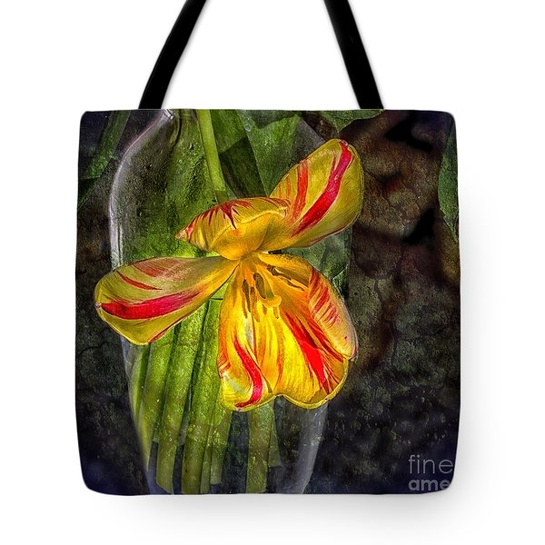 In The Light Of Dawn Tote Bag