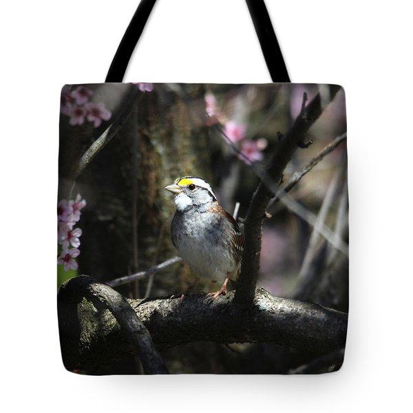 In The Light Of Morning Tote Bag by Trina Ansel