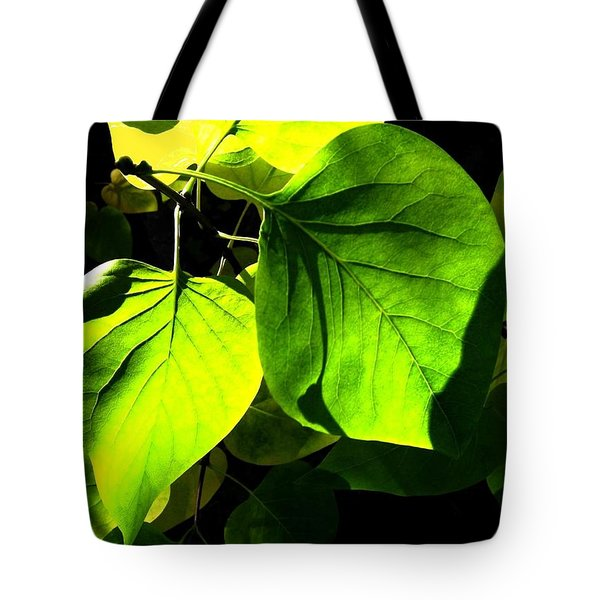 In The Limelight Tote Bag by Will Borden