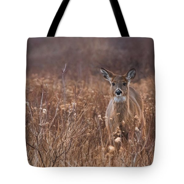 Tote Bag featuring the photograph In The Meadow by Robin-Lee Vieira