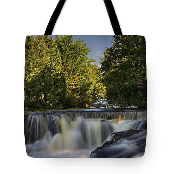 In The Middle Of The Middle Branch Tote Bag